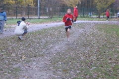 Cross Departemental Clichy S Bois le 04 12 05 026