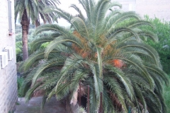 2007-04-28&29_Chpt_Fede_en_Corse_176