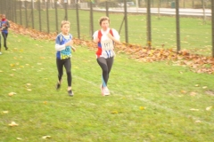 2008-11-16_Leo_Lagrange_Argenteuil_042